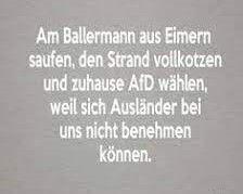 ballermann afd.jpg
