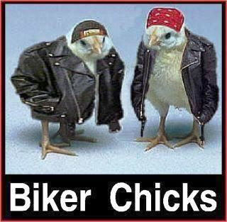 BikerChicks.jpg