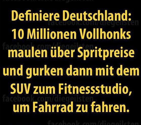 deutschland vollhonks.jpg