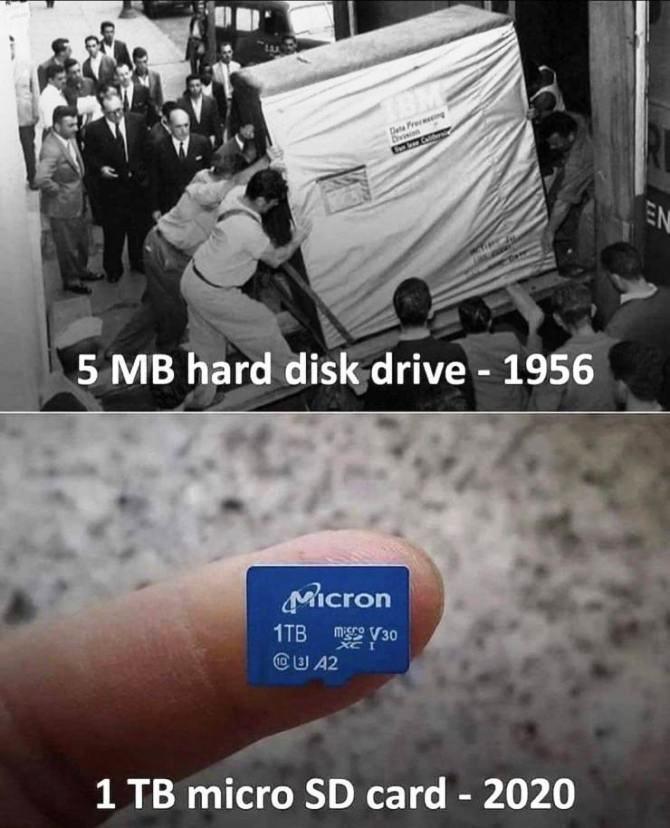 floppy1956.jpg
