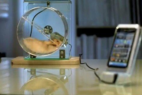 hamster-jpg (1).jpg