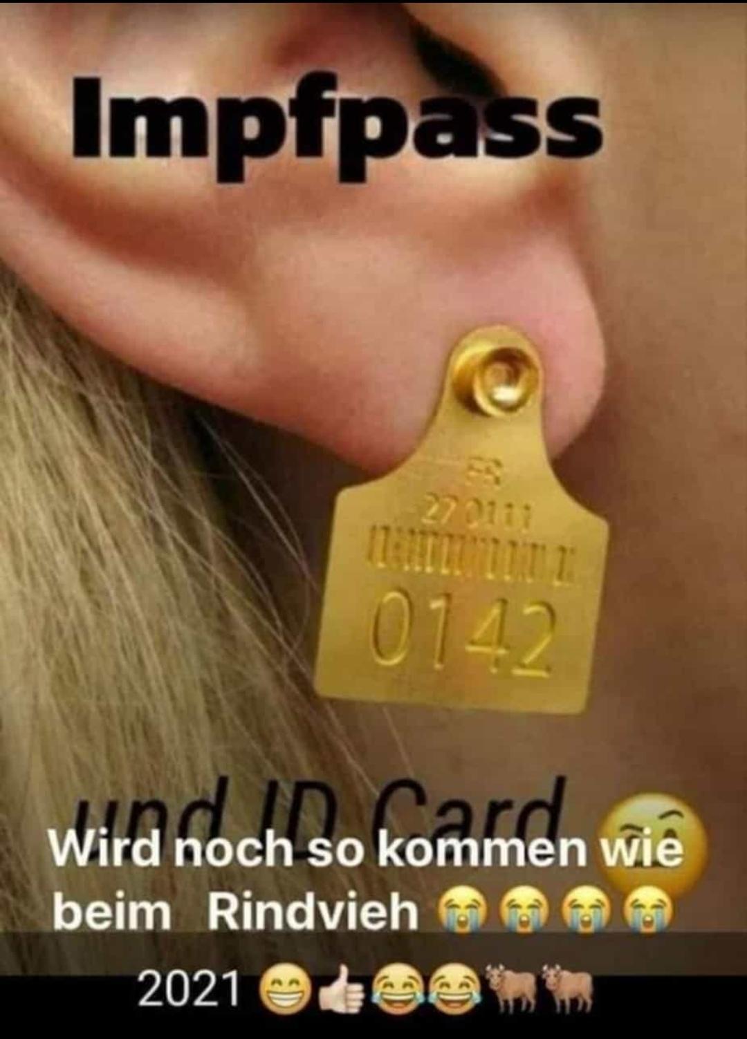 Impfpass_IDCard.jpeg