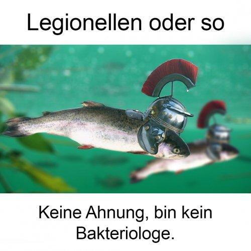 Legionellen.jpg