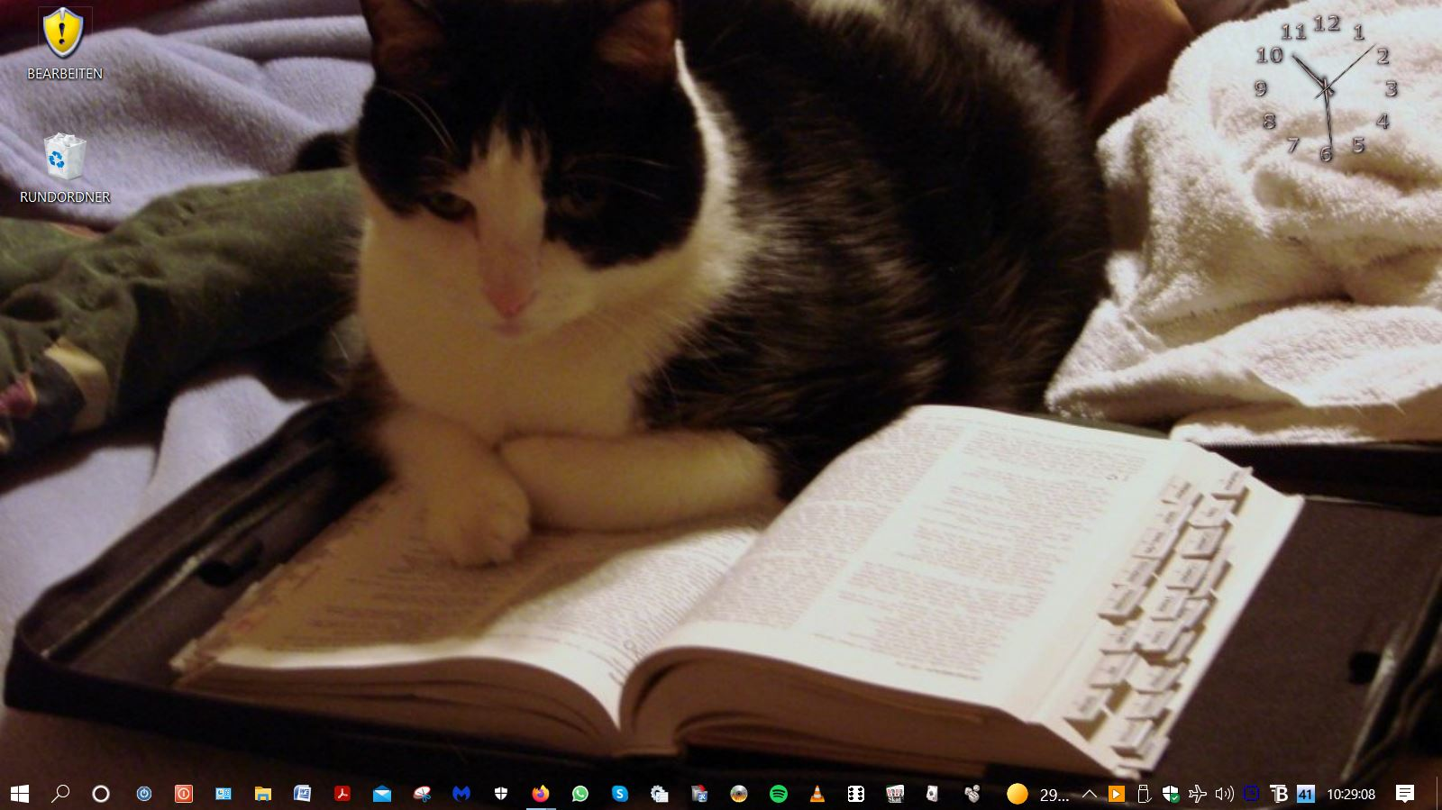 Lesemde Katze.JPG