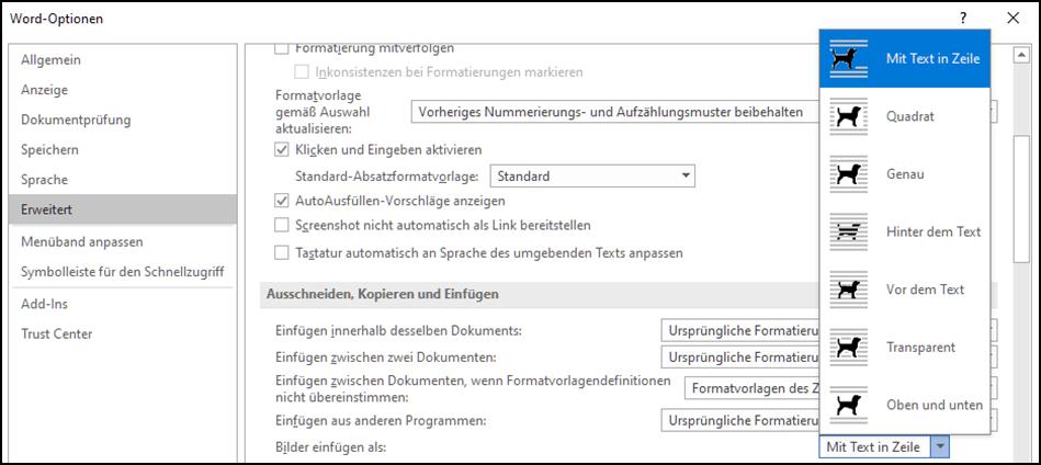 Microsoft,Word,Windows,7,8,10,Microsoft Word,Grafiken,Bilder,Photos,Fotos,Standard,Einfügeopti...png
