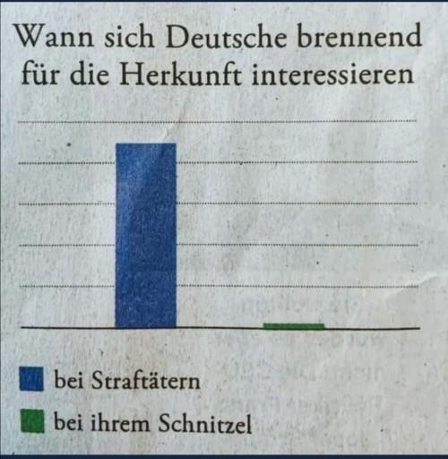 schnitzel.jpg