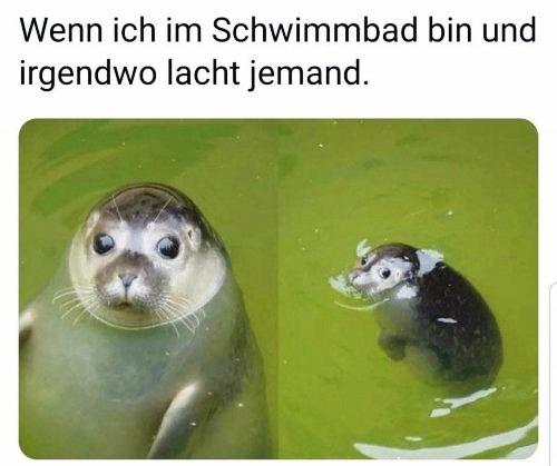 schwimmbad lacht.jpg