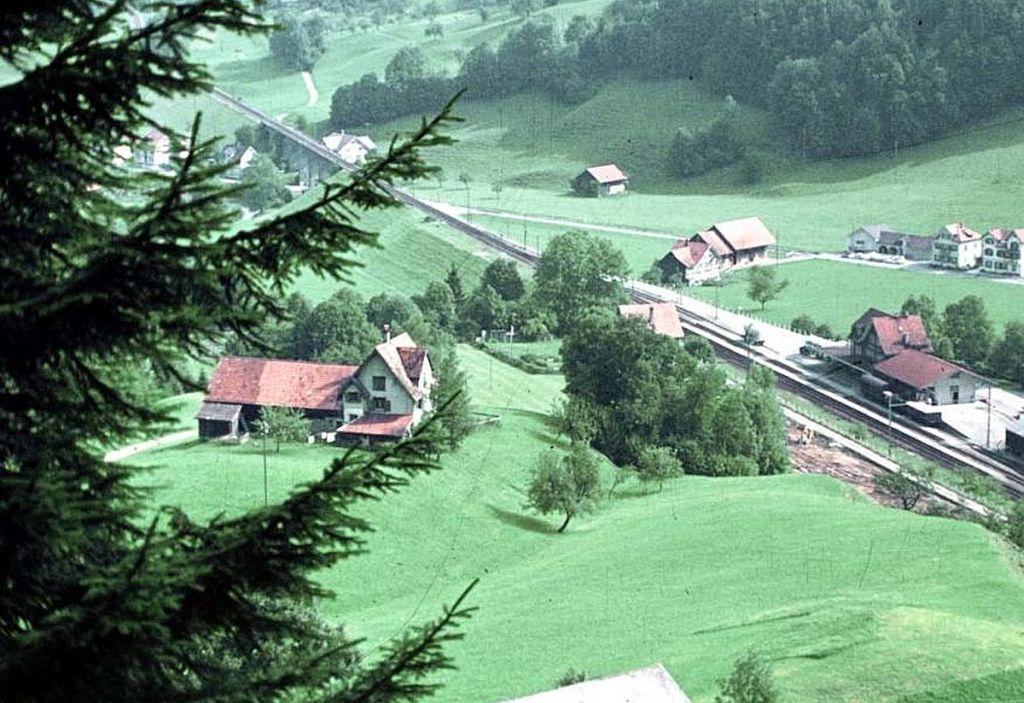 Toggenburg Bitzi_von_oben.jpg
