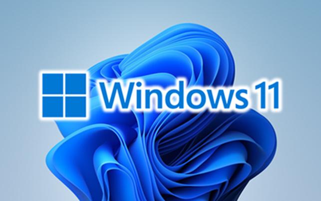 Windows 10 Windows 11 Windows10 Windows11 Win10 Win11 #Win10 #Win 11 #Windows11 #Windows10 Rat...png
