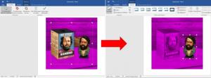 MicrosoftOfficeWordHintergrundMotivObjektAusschnittfreistellenausschneidenBildGrafikFotoHintergrund-entfernenObjekt-freistellenMotiv-freistellenHintergrund-ausblendenWord-Grafik-freistellen-3-300x111.png