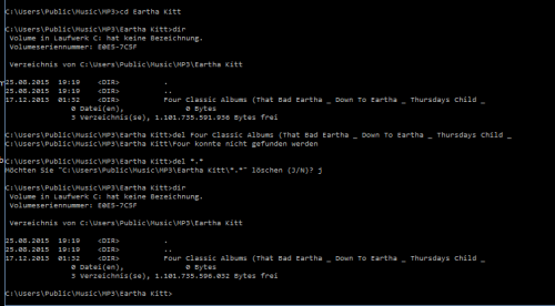 DOS Screenshot.png