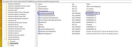 Insider_Registry_Applicability_Nach EnablePreviewBuilds.jpg