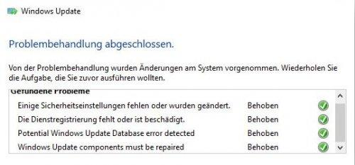 Ergebnis von Update-Problembehandlung am 31.01.17.jpg